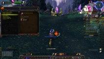 Le Gwiig  ( elfe de la nuit guerrière ) VS WoW n°6