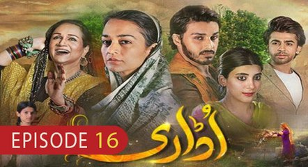Udaari Episode 16 - 24 July 2016