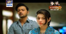 Watch Mein Mehru Hoon Episode 09 on Ary Digital in High Quality 25th July 2016
