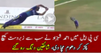 Ahmed Shezad Beautiful Catch Ever in CPL