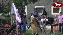 Cowboy Trail - Polish Cowboy Race Day - Żółkiewka k/Strzegomia, 23-07-2016