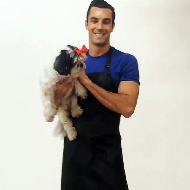 Ladybird Line Inc – Pet Grooming Apparel – Dog Groomers Apparel – Pro Salon Rhinestone Apron