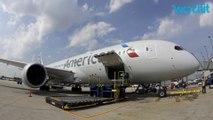 American Airlines Flight Makes Emergency Landing