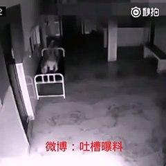 Alma se desprende de un cuerpo en China