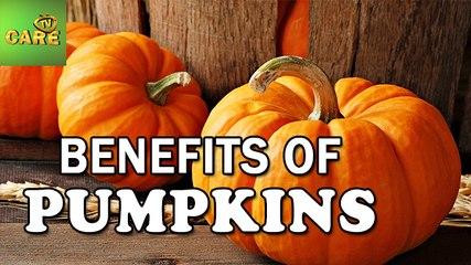 Benefits Of Pumpkins | Care Tv