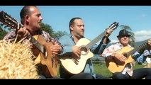 Chanson Gitane qui bouge - Clip 'BUSCAS' (David El Gitano)
