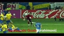 Compil de buts portant le nom de leurs auteurs ! Football