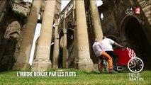 Marchés - L'huître Krystale, l'huître suspendue ! - 2016/08/01
