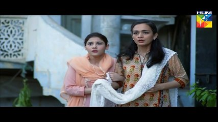 Udaari Episode 17 Full HD Hum TV Drama 31 July 2016
