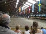 European Reining Championship 2005