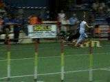 championnat international agility jumping Deutchland