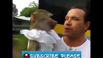FUNNY Animals Talking & Screaming Like Humans! Yelling Dogs Cats and Animal COMPILATION!