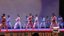 Celebrating the Korean traditional martial art...Global Taekwondo Festival kicks off in Seoul