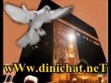 Abdurrahman önüL - Uçun kuşLar medineye