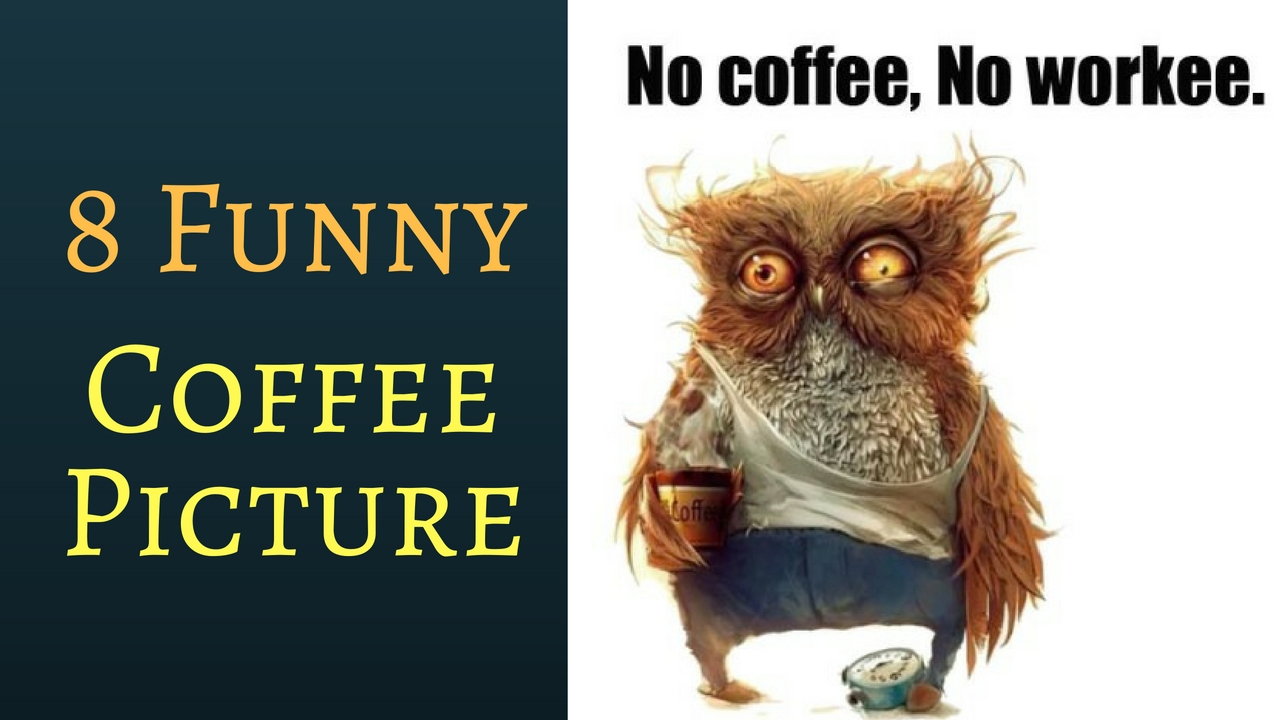 8 Best Funny Coffee Picture
