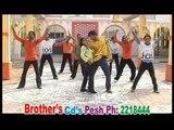 Brother Hits   Roro Raza Gule RoRo Raza   Vol 5   Pashto Song