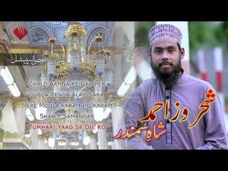 Tumhari Yaad Se Dil Ko - Shahroz Ahmed