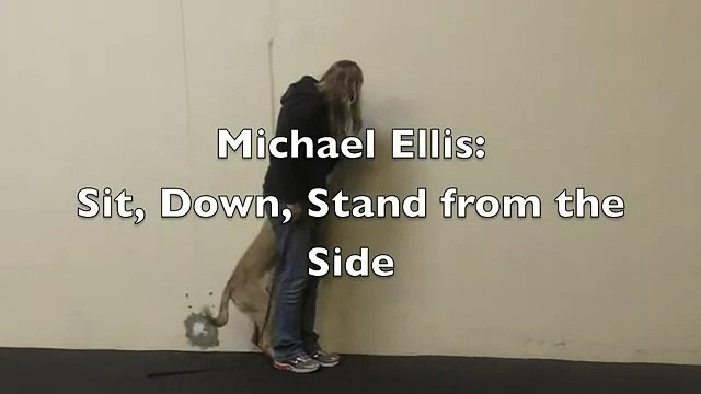 Michael Ellis: Sit, Down, Stand from the side