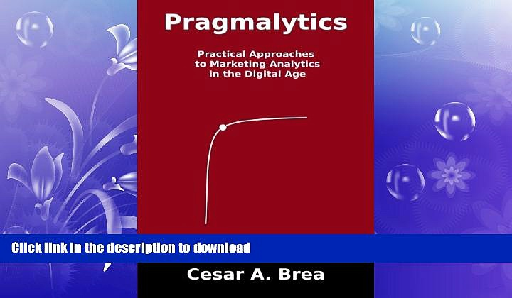 READ THE NEW BOOK Pragmalytics: Practical Approaches to Marketing Analytics in the Digital Age