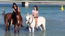 Dubai Beach i love Dubai world best place is Dubai
