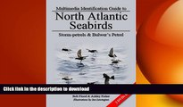 FREE DOWNLOAD  Storm-Petrels and Bulwer s Petrel (Multimedia Identification Guides to North