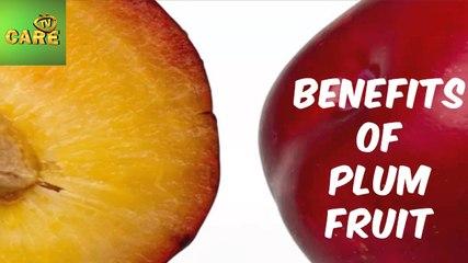 Benefits Of Plum Fruit | Care Tv