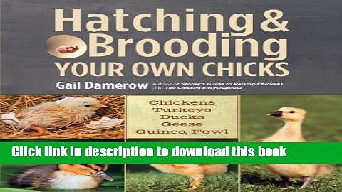 [Download] Hatching   Brooding Your Own Chicks: Chickens, Turkeys, Ducks, Geese, Guinea Fowl