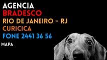 ✔ Agência BRADESCO em RIO DE JANEIRO/RJ CURICICA - Contato e endereço