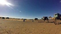 Camel trekking in Morocco - Trekking in Morocco – Sahara Desert Tours