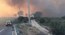 Incendie dans les Bouches-du-Rhône: le feu ravage 3300 hectares de garrigue