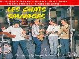 Les Chats Sauvages & Dick Rivers_Toi tu es bath pour moi (1961)(GV)
