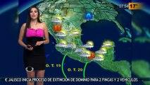 Susana Almeida Pronostico del Tiempo 11 de Agosto de 2016