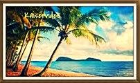 QUEENSLAND: Australiens tropischer Norden