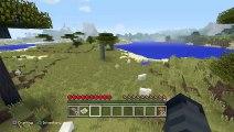 Minecraft w/Freinds