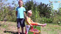 Бассейн Тачки Молния Маквин Игры в Бассейне Машинки Маквин Видео для детей Cars Toys McQueen Pool
