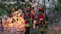 Португалия: огонь под контролем на Мадейре, но бушует на севере страны