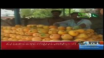 Dera Ismail District Dairy By Rizwan Mehsud