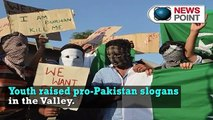 Kashmir unrest  Youths raise pro Pakistan slogans in the Valley   NewspointTV