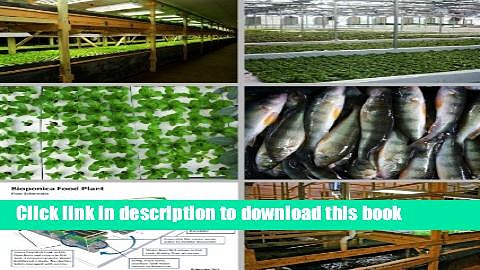 [Download] Aquaponics – Entrepreneurs Embrace Technology that Holds Key to Strengthening Local