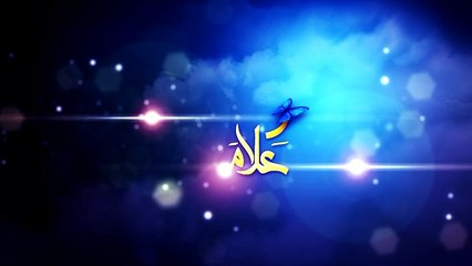 Ragheb Alama - Intro - v02 B