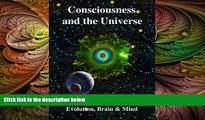 different   Consciousness and the Universe: Quantum Physics, Evolution, Brain   Mind