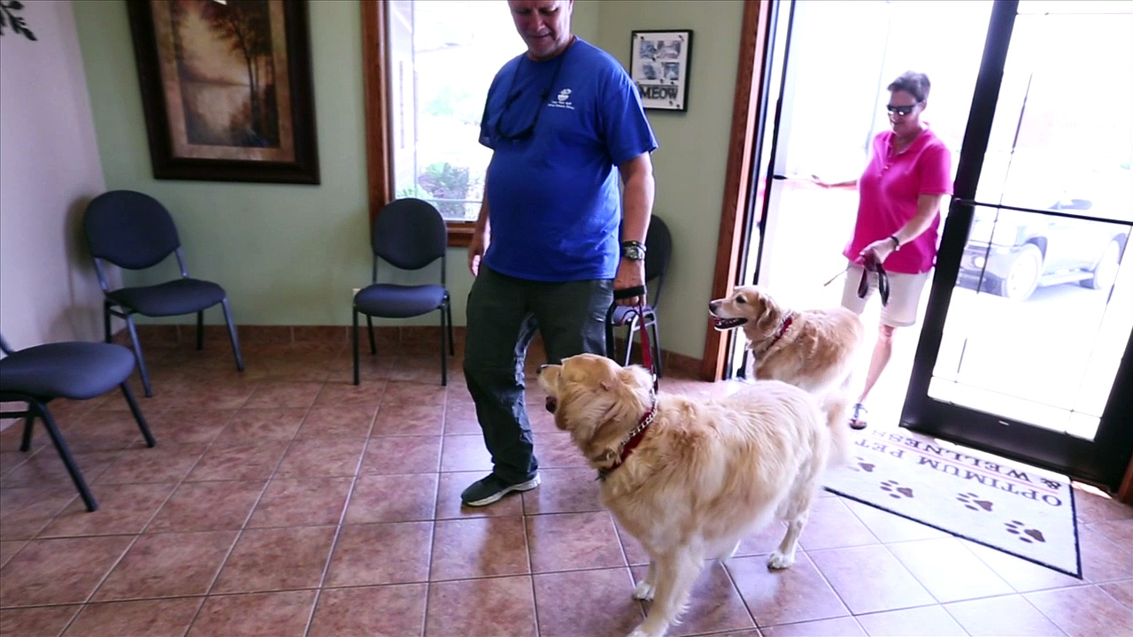 Welcome to Optimum Pet Health & Wellness Center PC