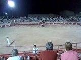 Course de taureaux 3