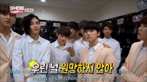 (SUB ESPAÑOL) ShowChamp BTS. Idol Kpop Star Quiz. SEVENTEEN.