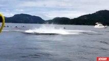 Des baleines sautent autours de plusieurs kayaks