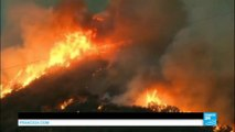 États-Unis : l'incendie Blue Cut poursuit ses ravages en Californie, les pompiers désespérés
