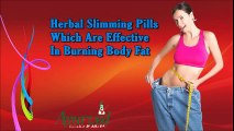 Herbal Slimming Pills Which Are Effective In Burning Body Fat