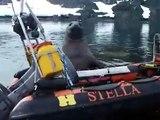 Cet éléphant de mer essaye de voler le bateau de chercheurs :)