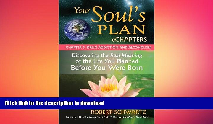 FAVORITE BOOK  Your Soul s Plan eChapters – Chapter 5: Drug Addiction and Alcoholism: Discovering