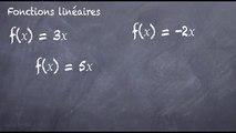 3ème Les fonctions Fonction linéaire, la définition